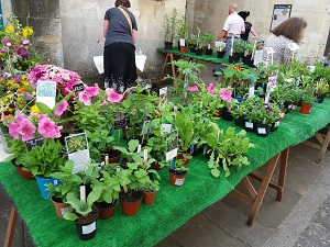 Stroud Country Market